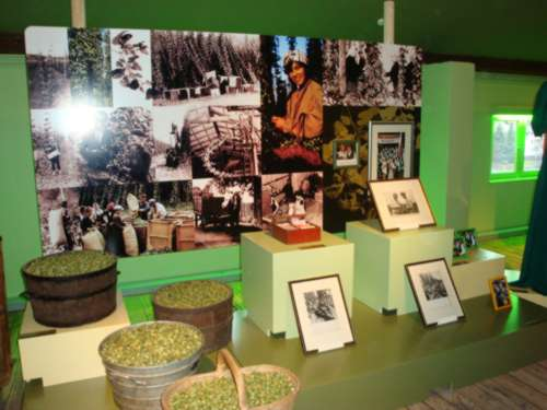 muzej hmeljarstva