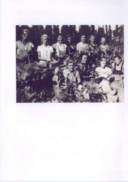 Pri Dobnik 1949