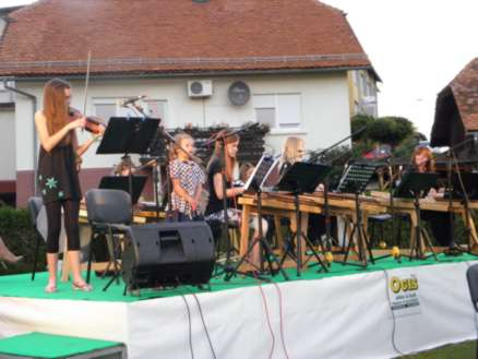 citrarski orkester2